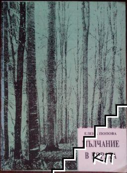 Мълчание в гората