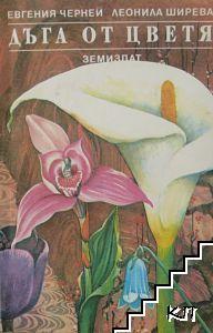 Дъга от цветя
