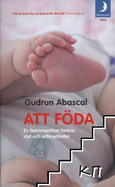 Att föda: en barnmorskas tankar, råd och erfarenheter