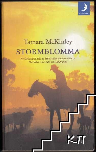 Stormblomma