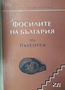 Фосилите на България. Том 6Б: Палеоген. Морски таралежи