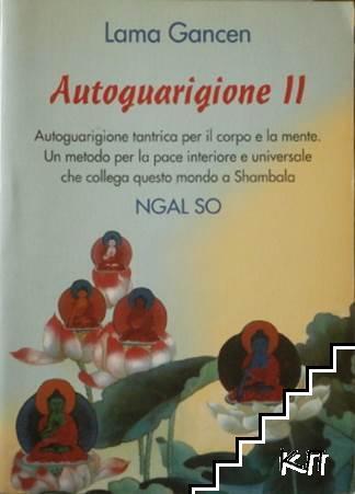 Autoguarigione. Vol. 2: Autoguarigione tantrica per il corpo e la mente