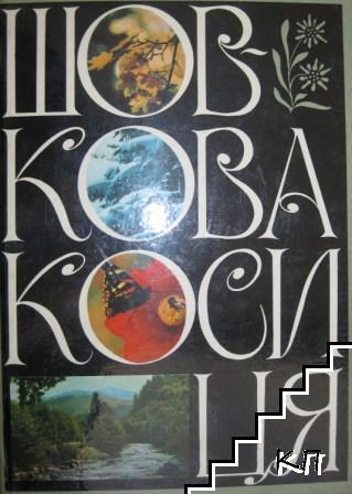 Шовкова косиця / Шелковой цветок