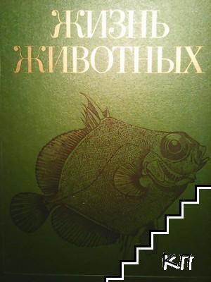 Жизнь животных. Энциклопедия в семи томах. Том 4: Ланцетники, круглоротые, хрящевые рыбы, костные рыбы