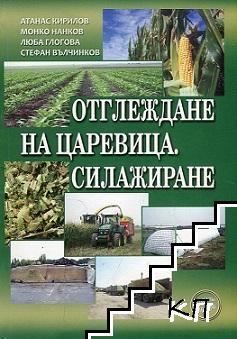 Отглеждане на царевица. Силажиране