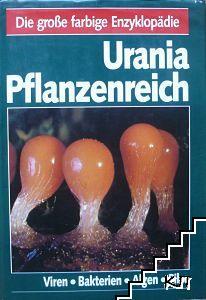 Urania Pflanzenreich: Viren. Bakterien. Algen. Pilze