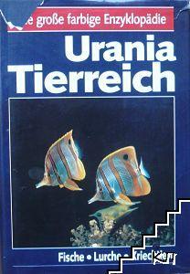 Urania Tierreich: Fische. Lurche. Kriechtiere
