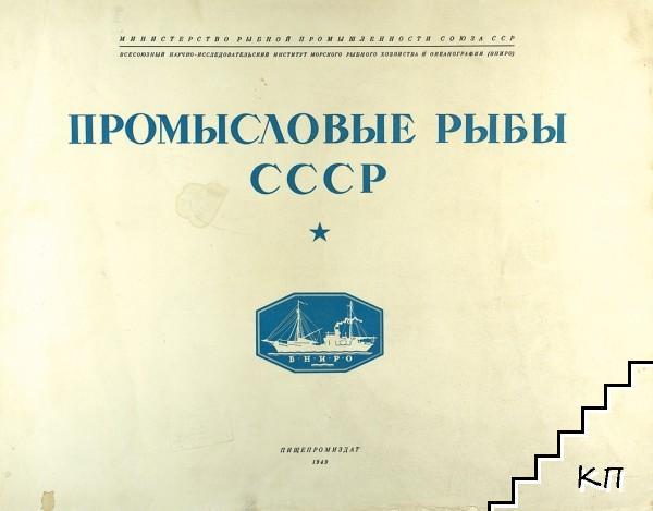 Промысловые рыбы СССР (Допълнителна снимка 2)