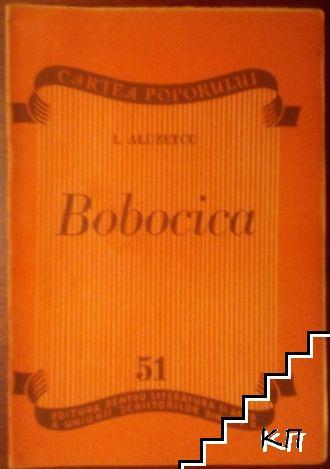 Bobocica