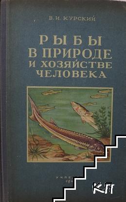 Рыбы в природе и хозяйстве человека