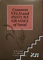Common Veld and Pasture grasses of Natal