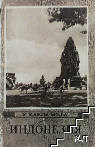 У карты мира. Индонезия