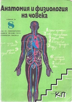 Анатомия и физиология на човека за 8. клас