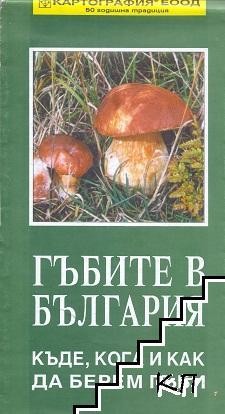 Гъбите в България - къде, кога и как да берем гъби