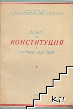 Проект за конституция и мотиви към нея
