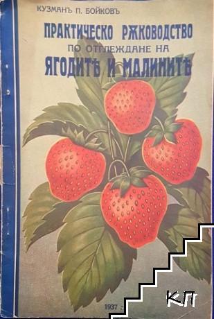 Практическо ръководство по отглеждане на ягодите и малините