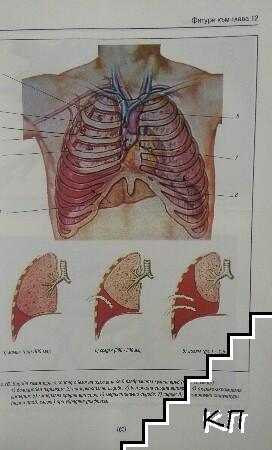Торакална хирургия (Допълнителна снимка 1)