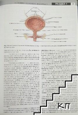 Нефрология (Допълнителна снимка 3)