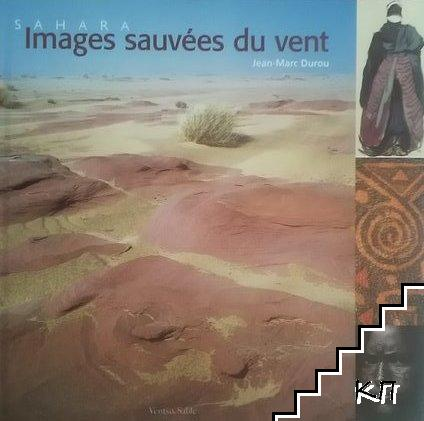 Sahara. Images sauvées du vent