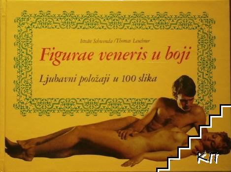 Figure veneris u boji: Ljubavni položaji u 100 slika