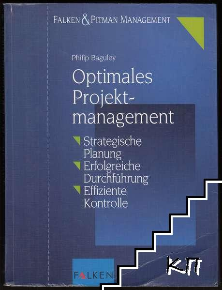 Optimales Projektmanagement