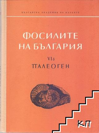 Фосилите на България. Том VIб: Палеоген. Морски таралежи