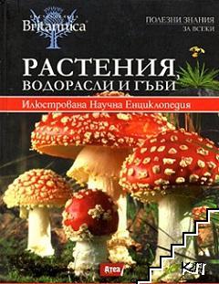 Растения, водорасли и гъби