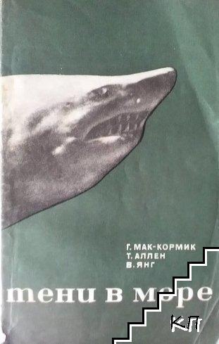 Тени в море - акулы и скаты