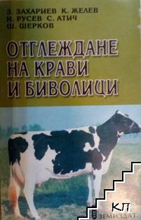 Отглеждане на крави и биволици