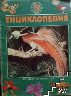 Енциклопедия: Птици
