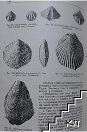 Геология на България (Допълнителна снимка 3)