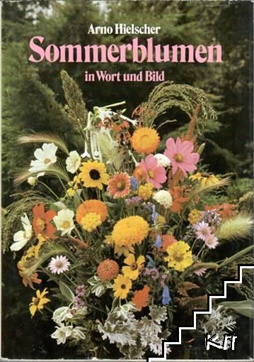 Sommerblumen in Wort und Bild