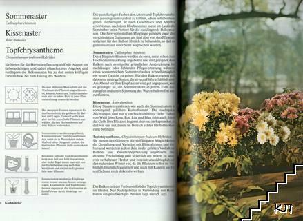 Unsere Balkonpflanzen (Допълнителна снимка 1)