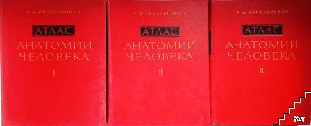 Атлас анатомии человека в трех томах. Том 1-3