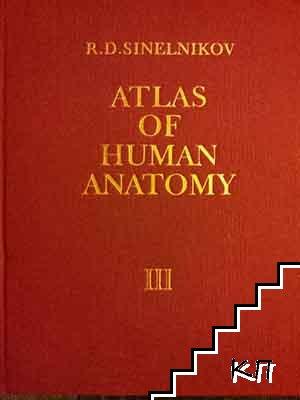 Atlas of human anatomy. Part 3