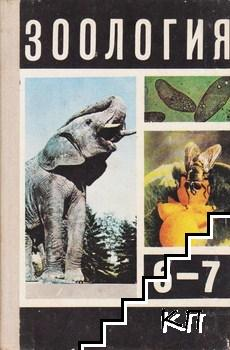 Зоология для 6.-7. класса средней школы
