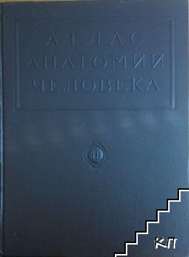 Атлас анатомии человека в пяти томах. Том 2-5