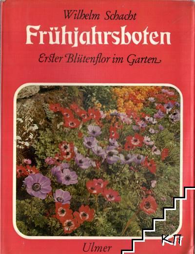 Frühjahrsboten. Erster Blütenflor im Garten