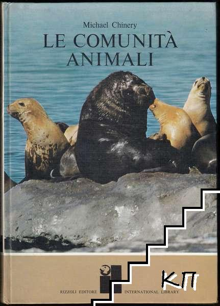 Le comunità animali