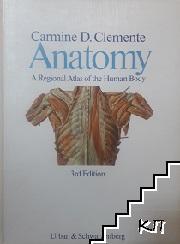 Anatomy a regional atlas of the numan body