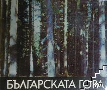 Българската гора