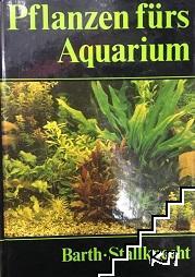 Pflanzen fürs Aquarium: Buch gebraucht kaufen