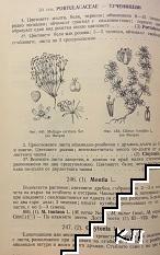 Флора на България. Том 1