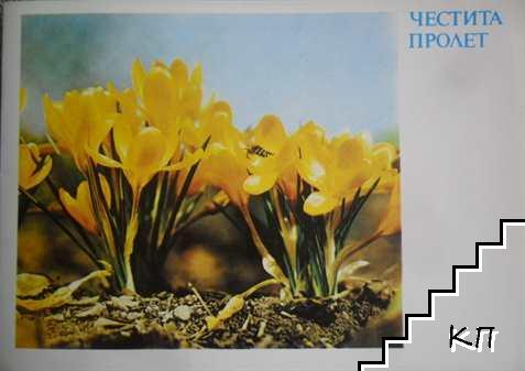 Честит празник Марта! Честита Пролет! Честито Равноденствие!