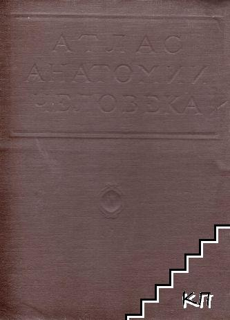 Атлас анатомии человека в пяти томах. Том 5: Учение о нервной системе