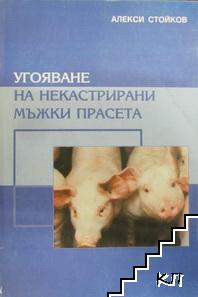 Угояване на мъжки некастрирани прасета