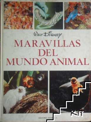 Maravillas del mundo animal