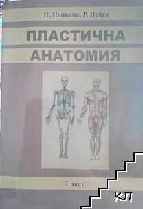 Пластична анатомия. Част 1