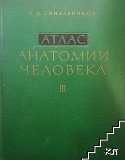 Атлас анатомии человека. Том 3