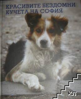 Красивите бездомни кучета на София